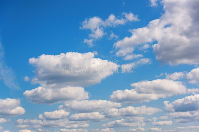 天堂般的白天在一个晴朗的夏日 天空蔚蓝的自然构成 免版税库存图片