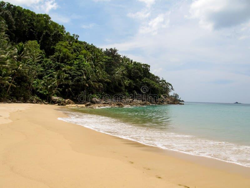 天堂 热带密林美丽的景色有棕榈树和离开的完善的干净的海滩的 库存图片
