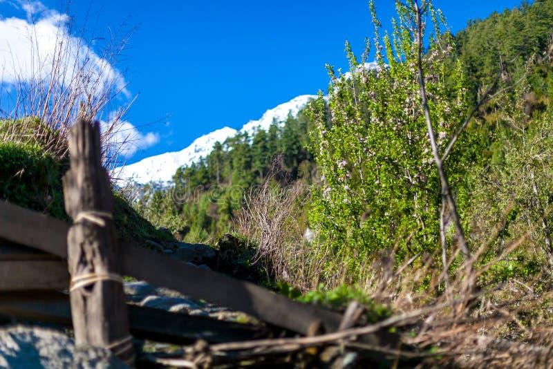 晴天山在小山观点下的自然早晨 山迁徙的风景 没人照片 水平的照片 库存图片