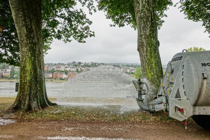 天旱条件在莱茵河的德国 免版税图库摄影