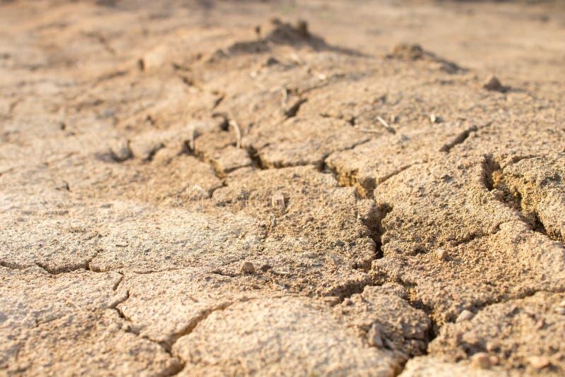 天旱 天旱 干燥气候灾害自然泰国 免版税库存照片