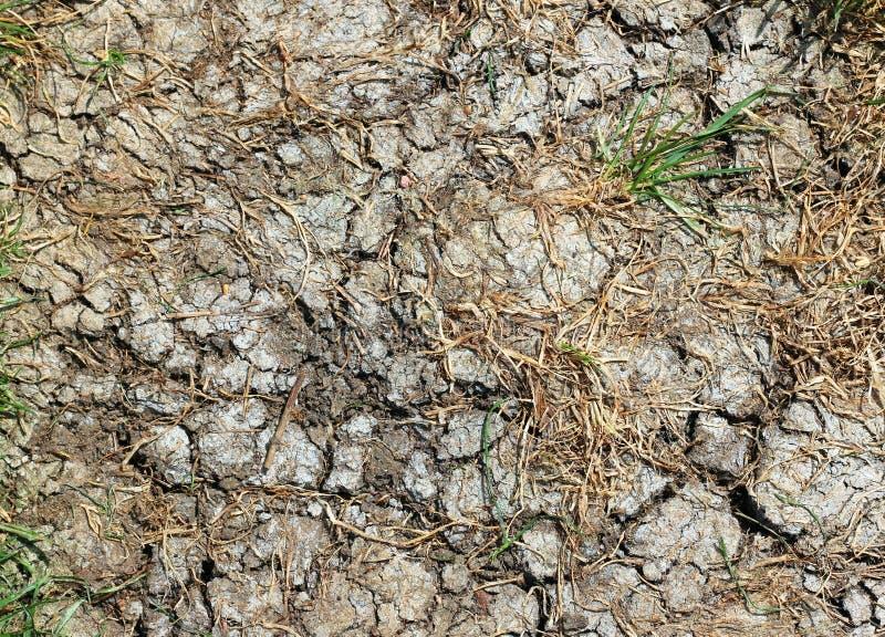 天旱 炎热的干燥破裂的地面 库存照片