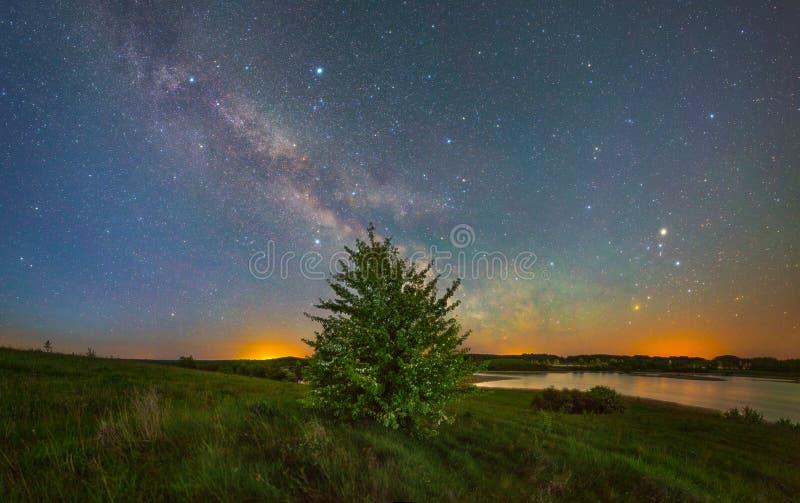 满天星斗横向的晚上 库存图片