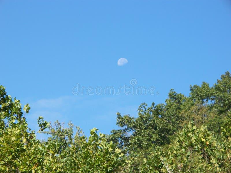 天月亮 免版税库存图片