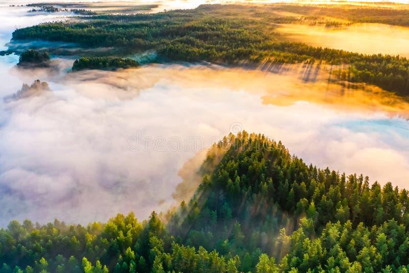 天气变动概念 美好的早晨风景,鸟瞰图 太阳升起在具球果森林 库存图片