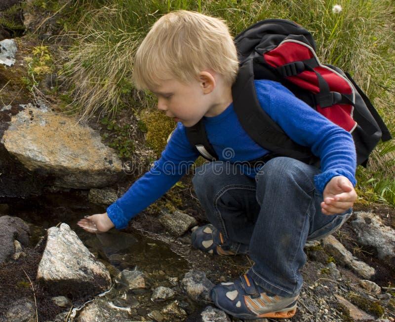 天然泉水 库存图片