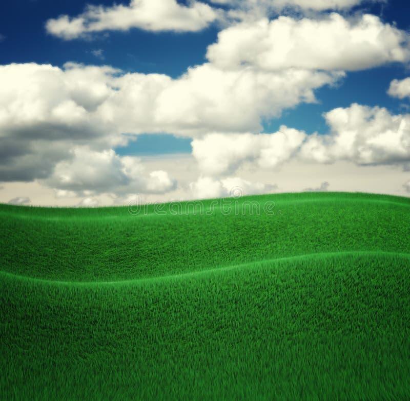 天空和草背景,新绿色领域 3d回报 向量例证