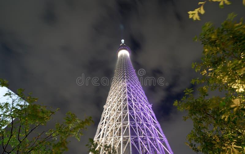 天空树 图库摄影