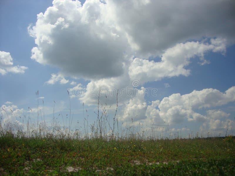 天空用云彩盖 免版税库存照片