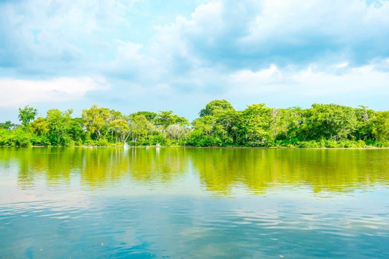 天空的反射在盐水湖和树墙壁,泰国的 免版税库存图片