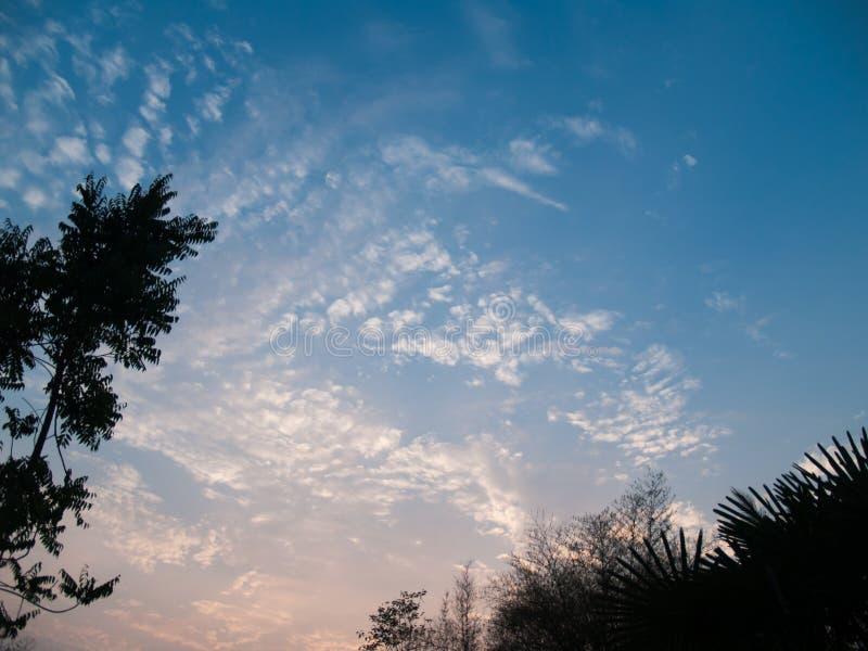 天空的图象与云彩和树的在角落 免版税库存照片