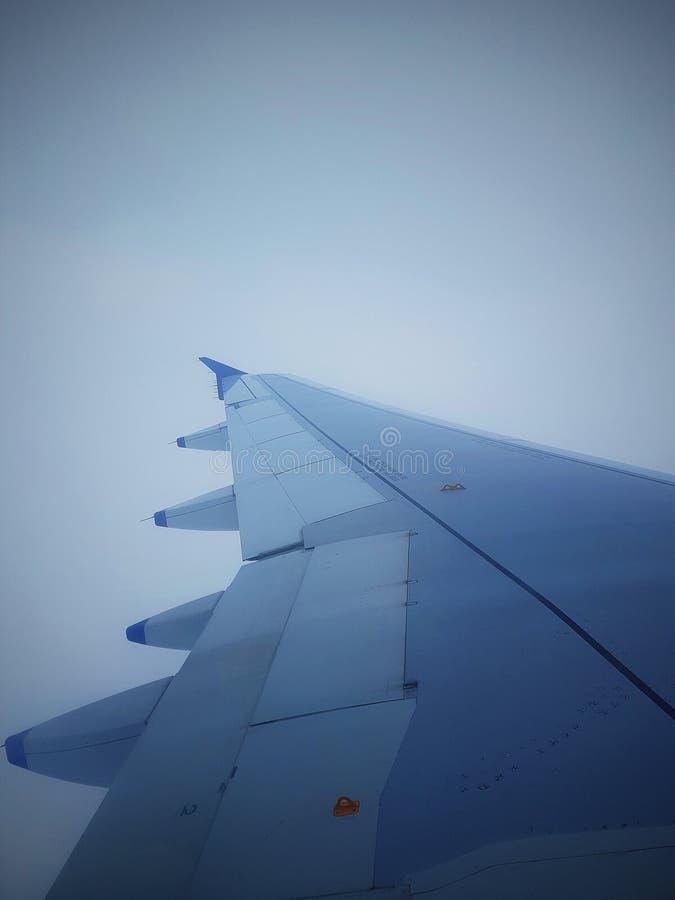天空翼  免版税库存照片