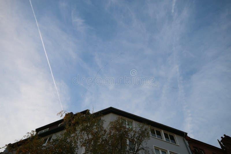 天空背景,cloudscape 库存图片