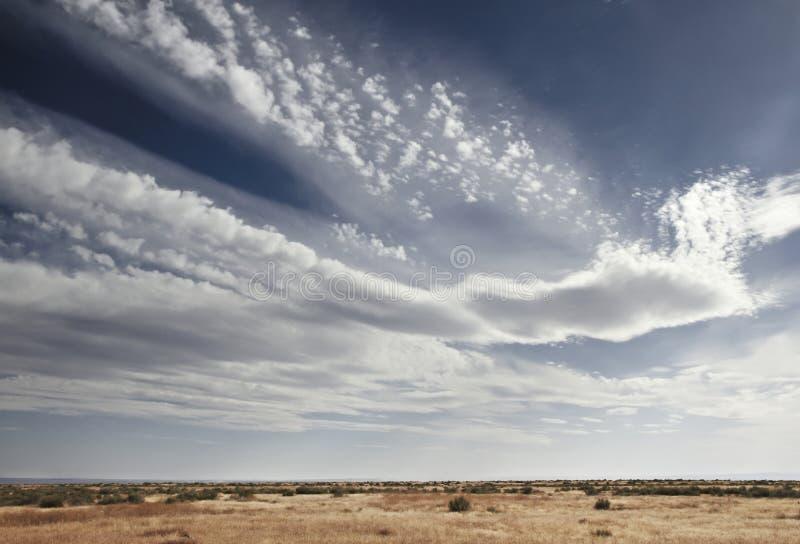 天空蔚蓝充满在prarie风景上的白色云彩 库存图片