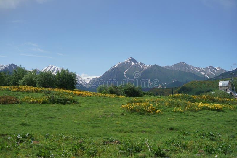 天空蔚蓝和绿色山 图库摄影