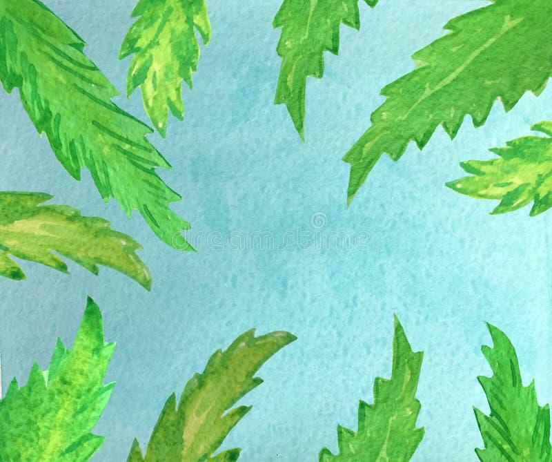 天空蔚蓝和绿色棕榈叶 库存例证