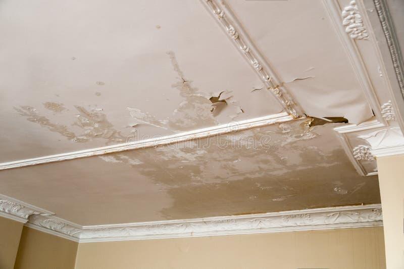 天花板漏出 库存图片