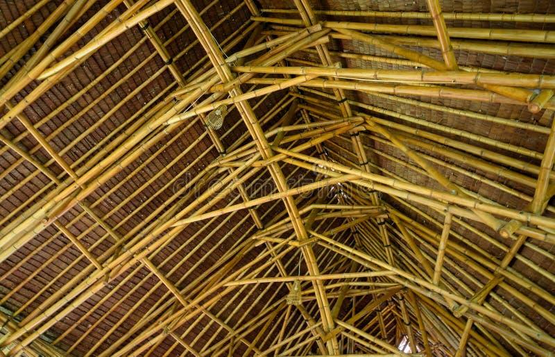 天花板由竹子制成 图库摄影