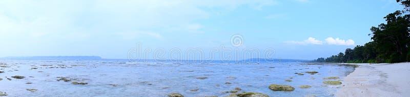 天蓝色的海水、岩石和桑迪原始海滩、沿海植被和清楚的天空蔚蓝-海景全景  免版税库存照片