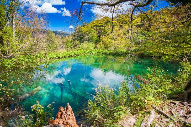 天蓝色的湖在Plitvice 免版税图库摄影