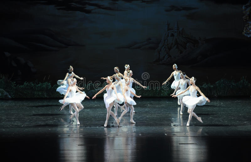 天鹅家庭芭蕾天鹅湖 免版税图库摄影
