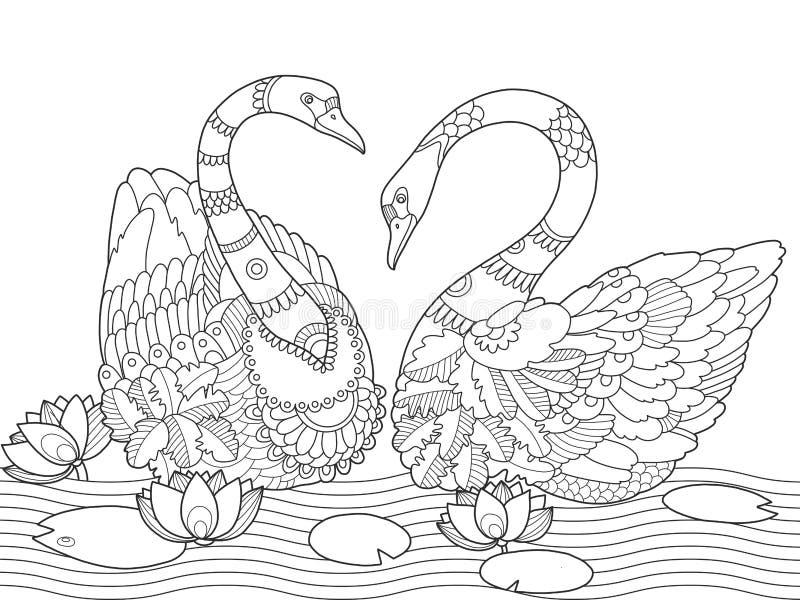 天鹅成人传染媒介的彩图 库存例证