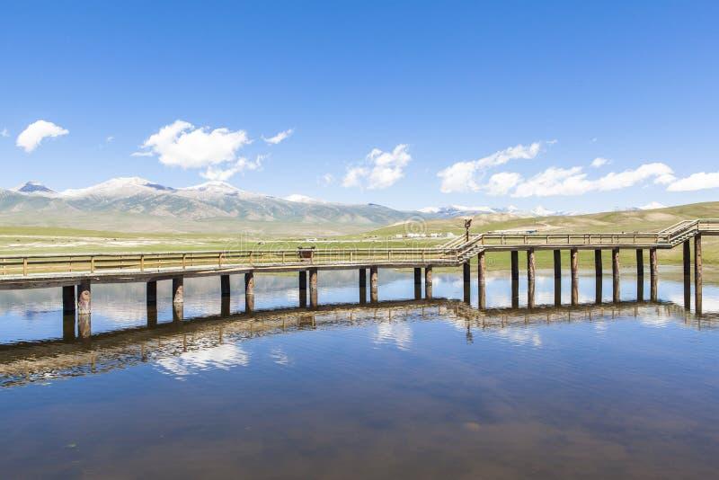 天鹅湖在巴音布鲁克草原在新疆 免版税库存照片