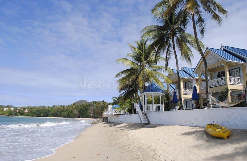 太平海滩在圣卢西亚 库存图片