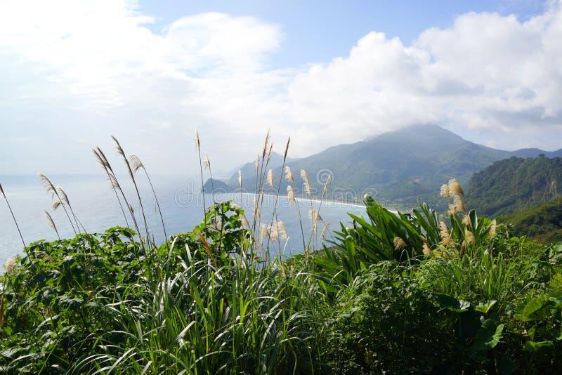 太平洋海岸 库存照片