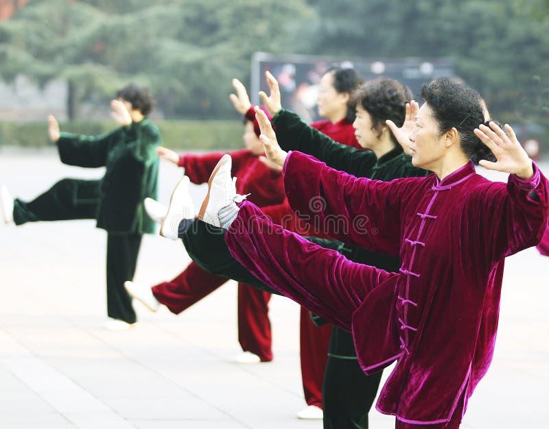?? di Tai Chi immagini stock libere da diritti