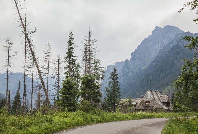 太脱拉山,波兰,欧洲-路和一个木小屋 库存照片