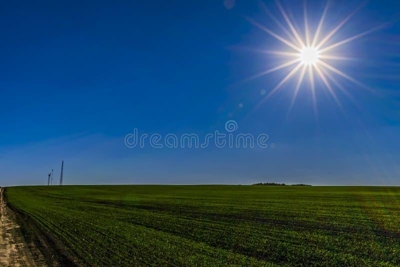 太阳、天空蔚蓝和绿色领域 库存照片