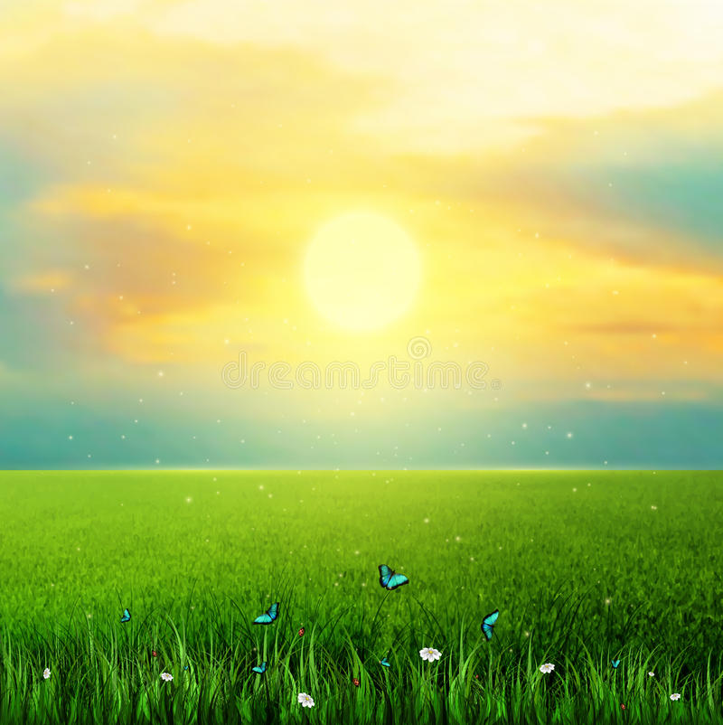 太阳、草、花和蝴蝶 向量例证