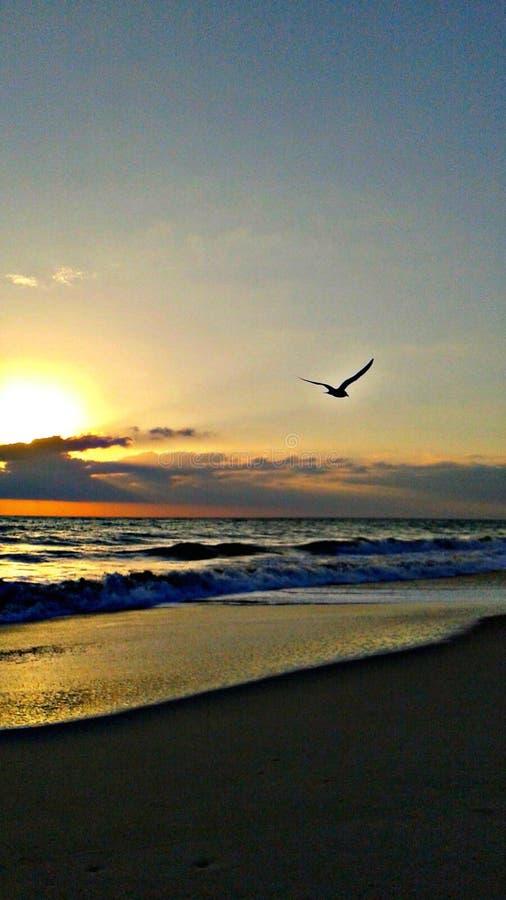 太阳上升 免版税图库摄影