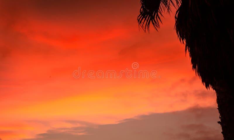 太阳下来上色天空和海洋 免版税库存照片
