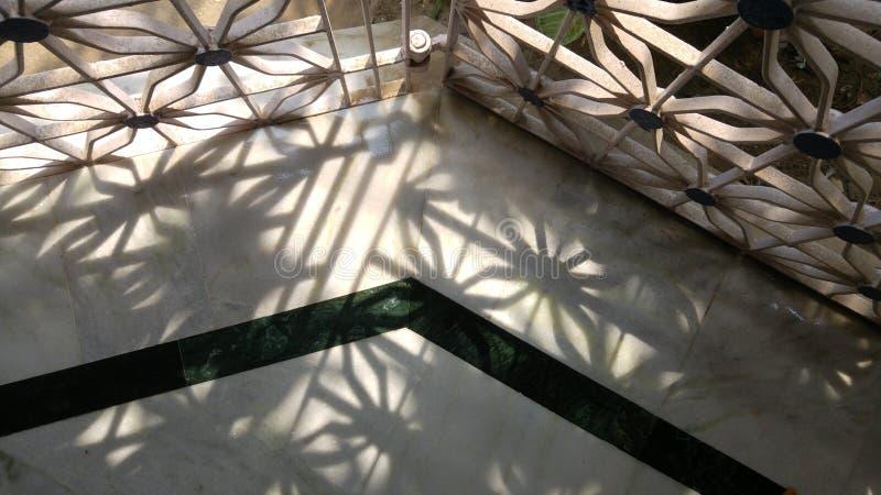 太阳亮光 免版税图库摄影
