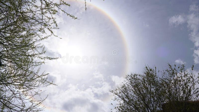 太阳光晕白色一些岩石和树枝 免版税库存图片
