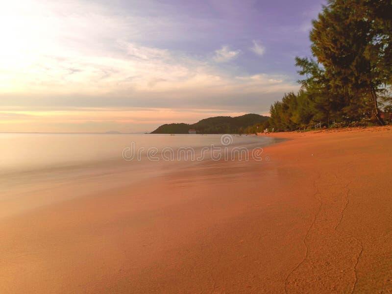 太阳光海和树 图库摄影