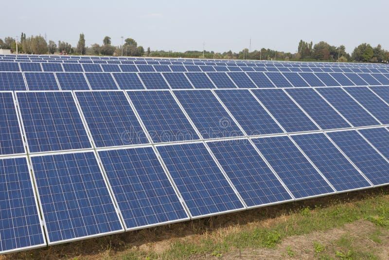 太阳农场在乡下 免版税库存图片