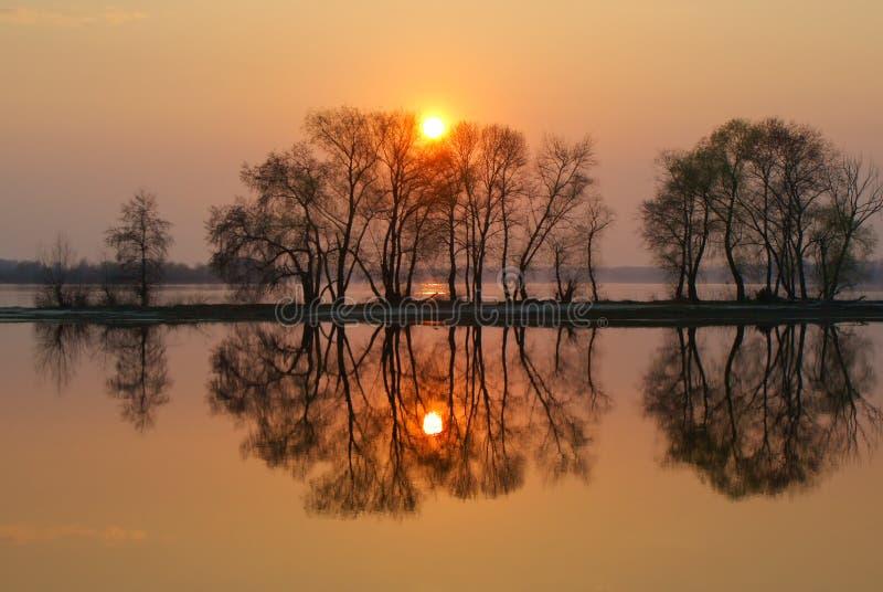 太阳和树的镜象反射在海湾在红色日落 免版税库存图片