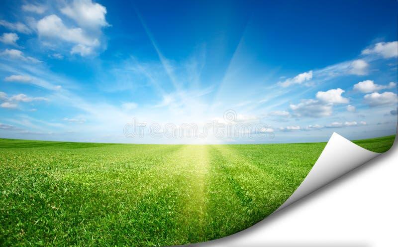 太阳和绿色新草地蓝天贴纸 库存照片