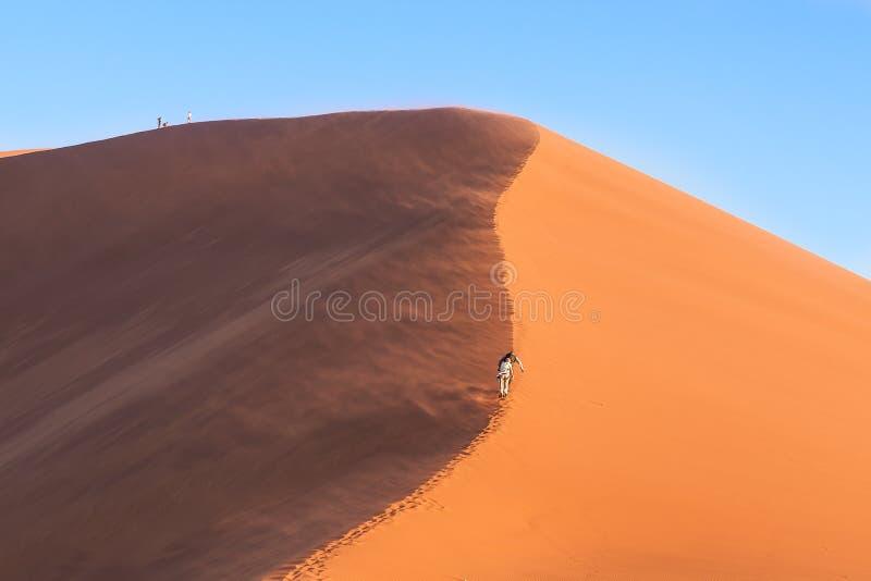 太阳和阴影射击沙丘45在纳米比亚 免版税库存照片