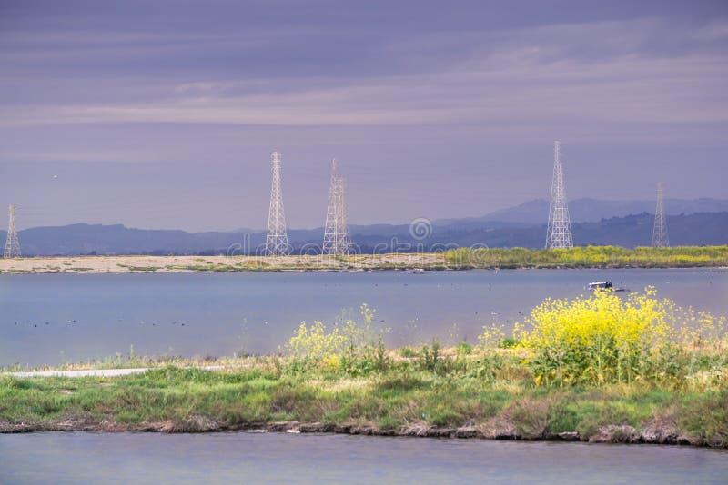 太阳在一多云和风暴日,森尼韦尔,圣照亮生长在一个堤坝和电塔的田芥菜 图库摄影