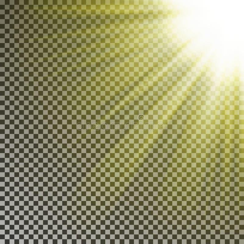 太阳在顶面rigth角落的光芒光 被隔绝的透明焕发黄色阳光作用对方格的bac 库存例证