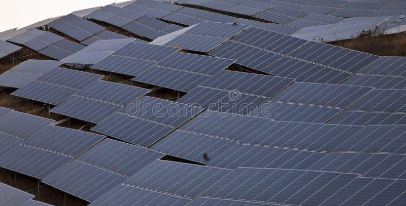 太阳工厂的次幂 免版税库存图片