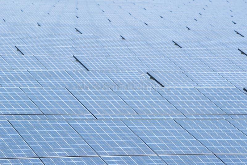 太阳电池板太阳能电池在太阳农场 免版税库存图片