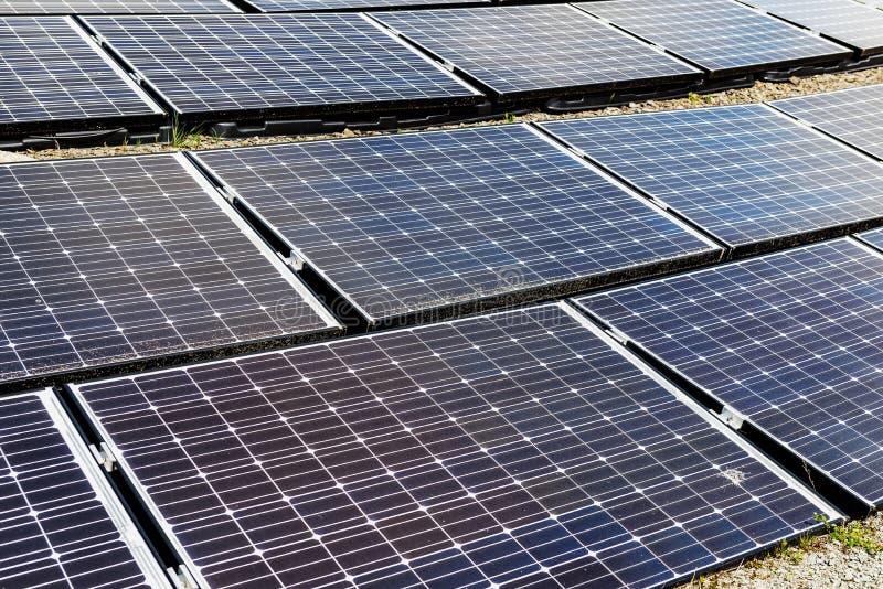 太阳电池板,供选择的电来源,金钱的力量, 免版税图库摄影