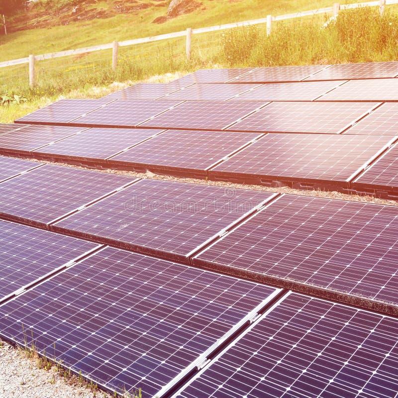 太阳电池板,供选择的电来源,金钱的力量 免版税库存图片