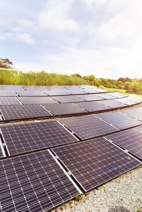 太阳电池板,供选择的电来源,金钱的力量 免版税库存照片