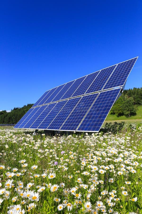 太阳电池板以绿色 库存图片